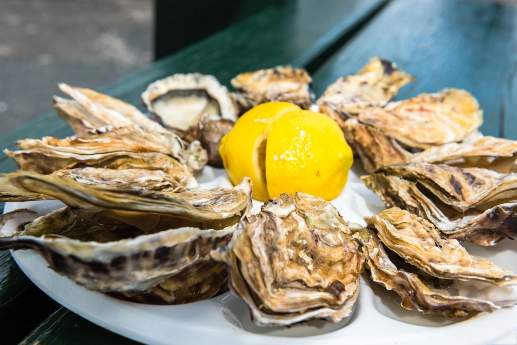 Oysters with lemon and ice in France