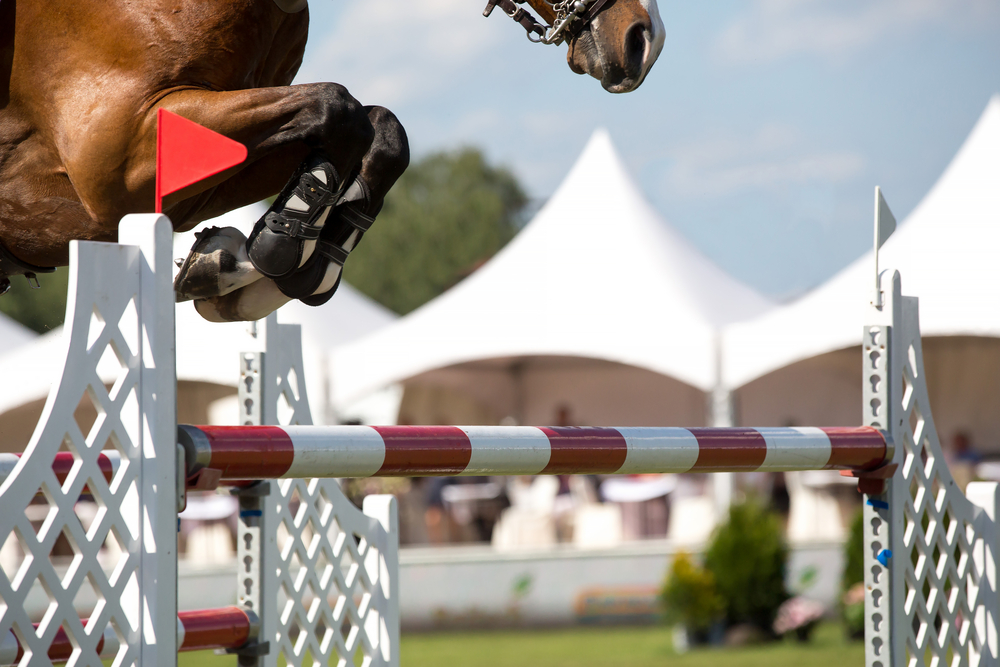Monte Carlo International Show Jumping