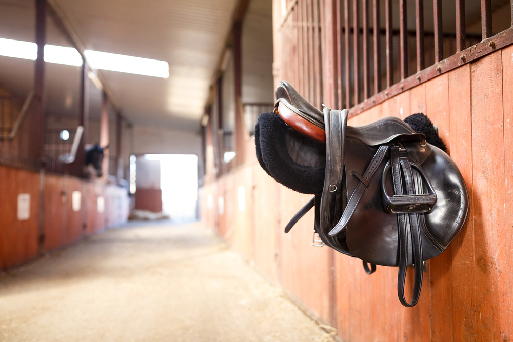 Horse saddle in stable near Monaco
